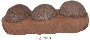 Figure: 3, This company offers various levels of counterfeit Hadrosaur eggs that vary in price and appearance